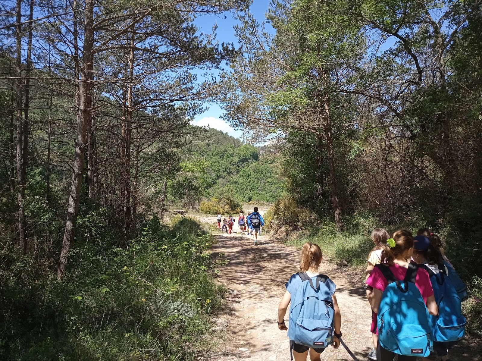 5è de primària d'excursió a la comarca d'Osona