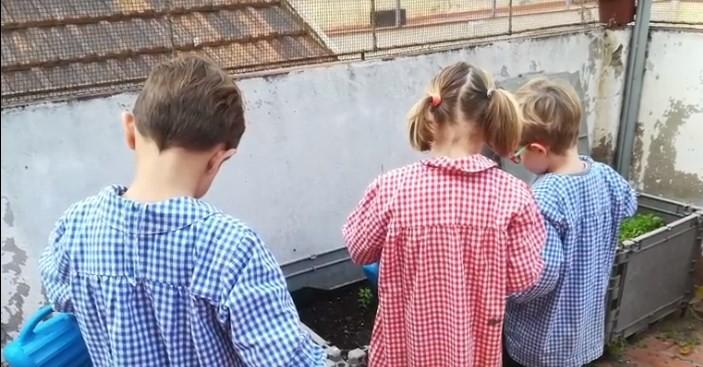 L'hort d'Educació Infantil a la tardor